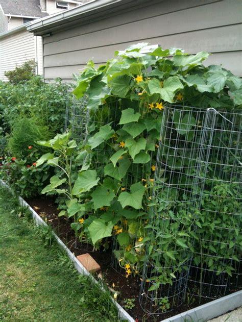 Garden Web Forum by Vertical Gardening