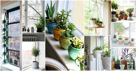 Window Sill Garden Inspiration Window Sill Planter Canada Antb Pottery How To Decorate Home With Plants Imagesthai