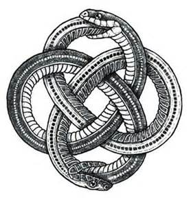Infinity Snake Meaning 25 Best Ideas About Ouroboros On
