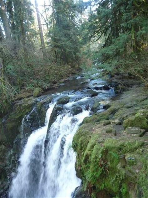 mcdowell creek falls lebanon or why go tripadvisor