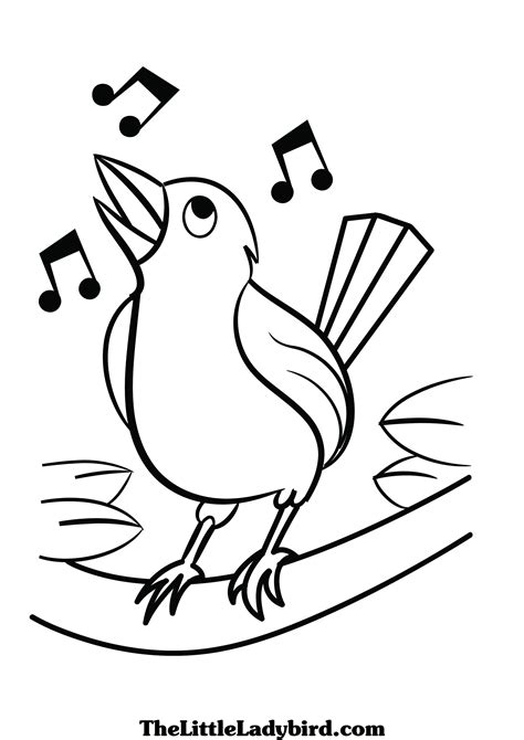 Coloring Pages Of Birds Singing | free birds coloring pages thelittleladybird com