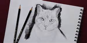 Dessin Chat Facile Faire