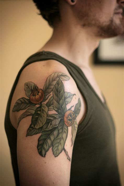 illustrative tattoo stunning botanical illustration of medlar fruits