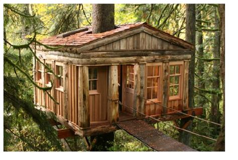 temple of the blue moon treehouse picture of treehouse