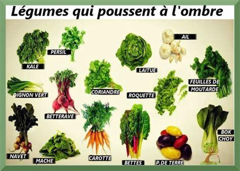 Faire Pousser Legumes Interieur by Les Meilleurs L 233 Gumes 224 Faire Pousser 224 L Ombre Jardin