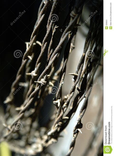 hanging photos on wire hanging wire stock photos image 336853