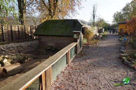 Kleines Bad Pyrmont Tickets by Erdm 228 Nnchen Tierpark Bad Pyrmont Freizeitpark Welt De
