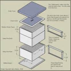 Top Bar Hive Feeder Plans Rosetta S Guide To Beehives