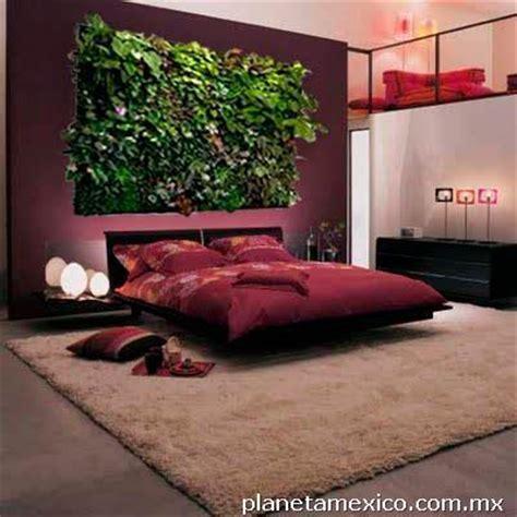imagenes de paredes verdes fotos de jardines verticales paredes verdes