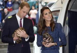 kate and william kate middleton and prince william debunked the divorce