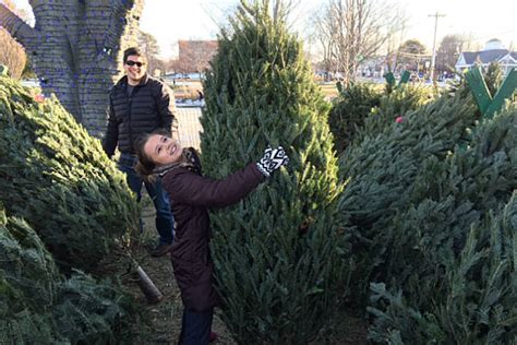 where is the best place to get a christmas tree