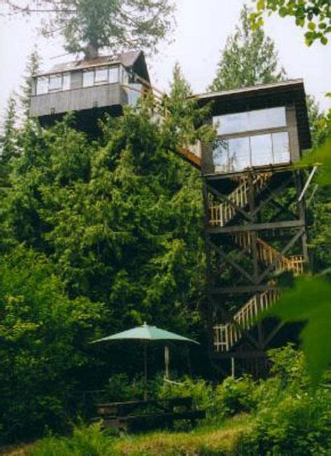 tree house hotel this tree house hotel is in washington state s gifford pinchot national forest