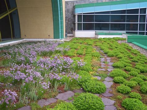 Rooftop Garden Indianapolis by Greenroofs Projects Indianapolis Children S Museum