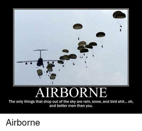 Bird Shit Meme - airborne the only things that drop out of the sky are rain