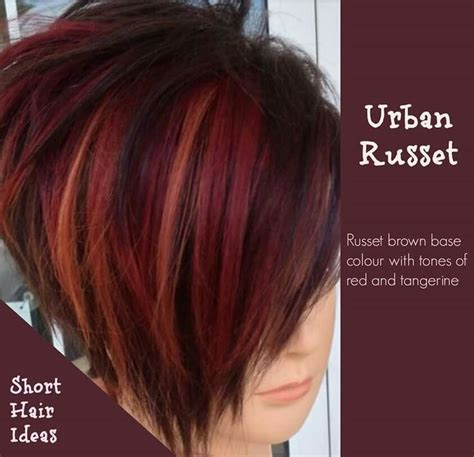 russet colored hair 25 best ideas about hair on maroon
