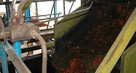 Minyak Yang Baru berita sawit gabon resmikan pabrik minyak sawit baru