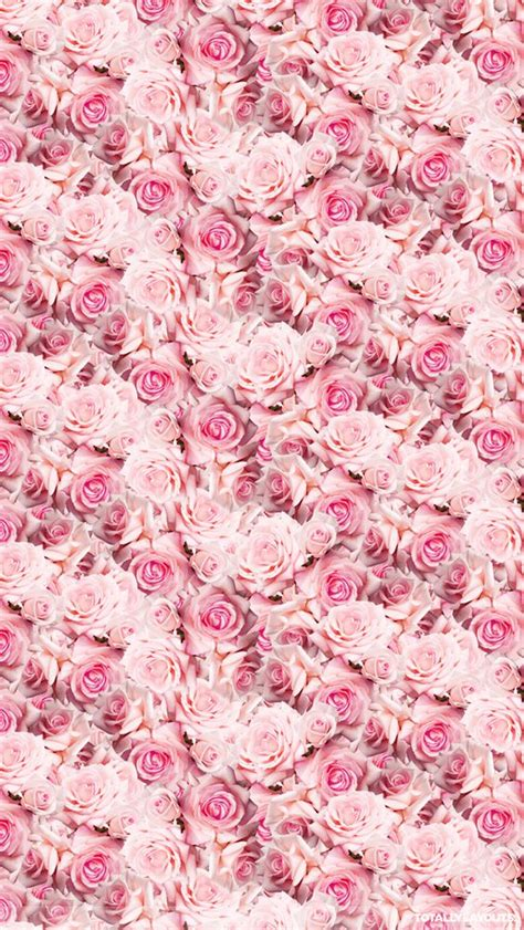 wallpaper iphone 6 tumblr pink pink iphone wallpaper tumblr pink wallpapers pinterest