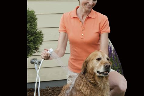 Rinse Ace Pet Shower by Pet Shower Blackdecker Pet Shower In The Home Depot