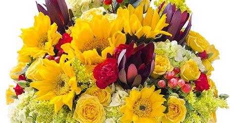 amazon prime  celebrates mothers day