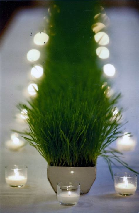 wheat grass in gutter centerpiece party time excellent