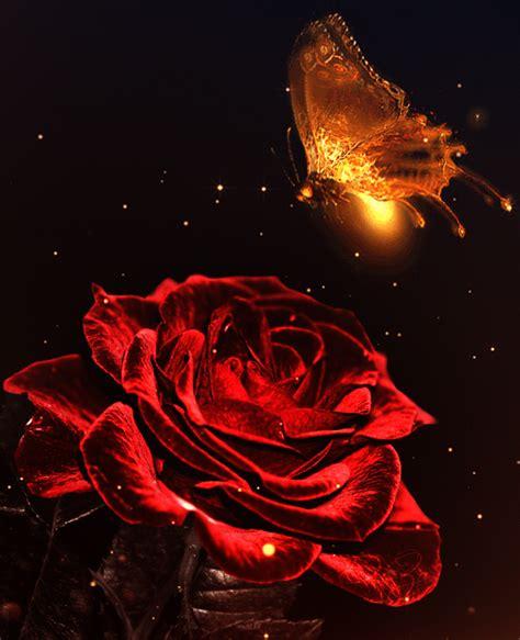 sui fiori e citazioni e aforismi sui fiori il linguaggio dell