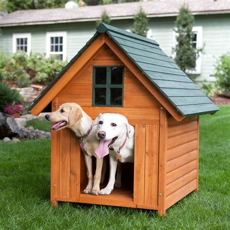 xl dog house xl dog house wood pet shelter deluxe rustic wooden a frame kennel extra large dog houses