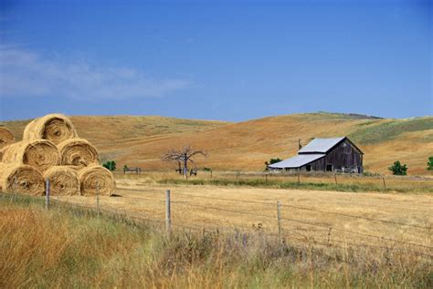 farmhouse ranch farm and ranch