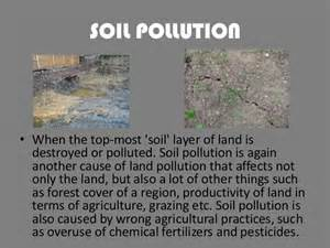 Essay About Land Pollution by Land Pollution Essay In Pdf Kingessays Web Fc2