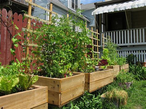 urban backyard garden five ways to use a small urban backyard articles