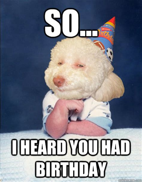 puppy birthday meme birthday memes quickmeme