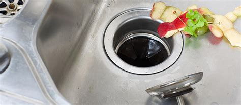 Can You Install A Garbage Disposal On Any Sink by What You Can And Cannot Put Your Garbage Disposal