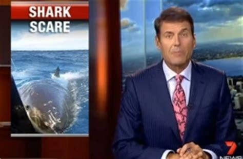 shark attacks related incidents shark attack survivors great white shark attacks boat shark attack survivors