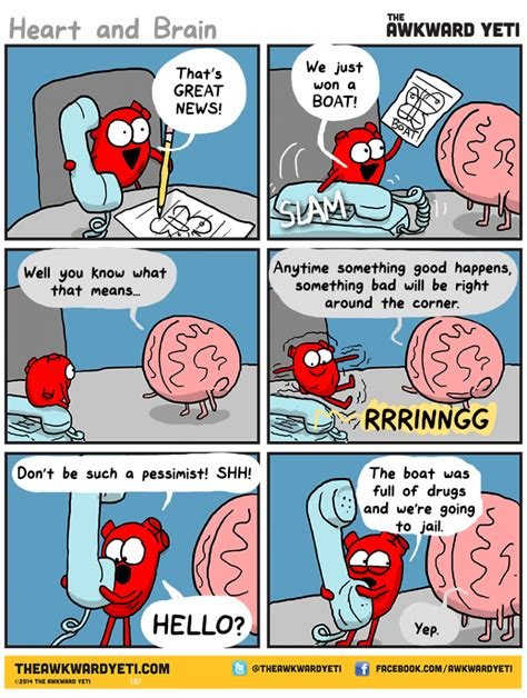 and brain an awkward yeti collection the boat