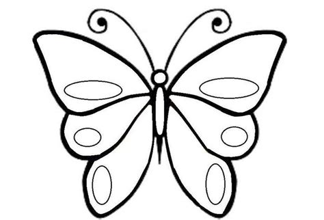 gambar kupu kupu hitam putih gambar kehidupan
