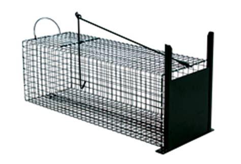 gabbie trappola per gatti trappole per animali gabbie gabbia