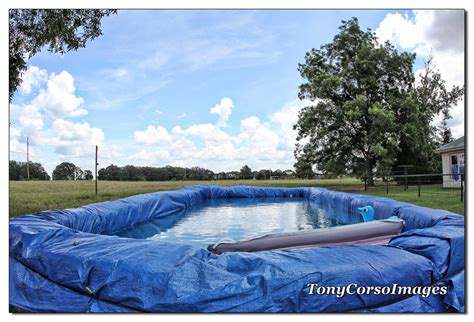 just add water redneck pool tony corso images