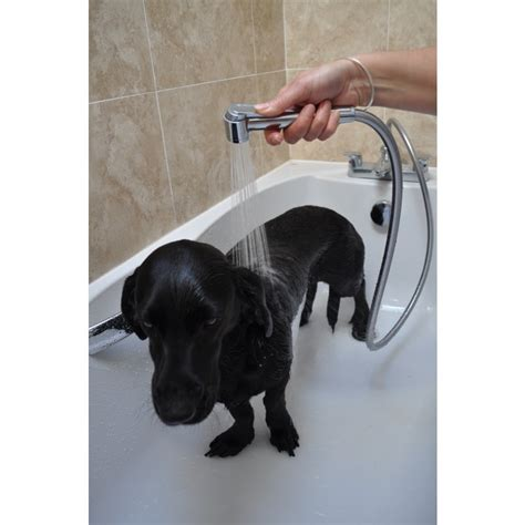 bathtub hose for washing dog pet shower perfect for dog or cat washing only 163 19 99