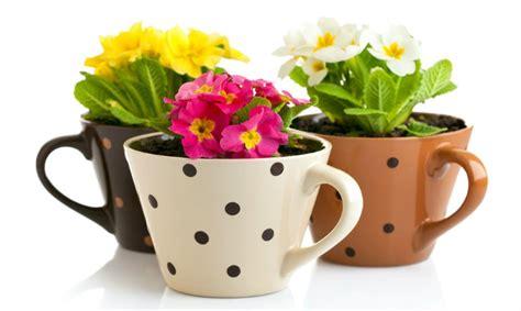 oggetti fai da te per arredare casa arredare casa fai da te 3 idee per vasi da fiori