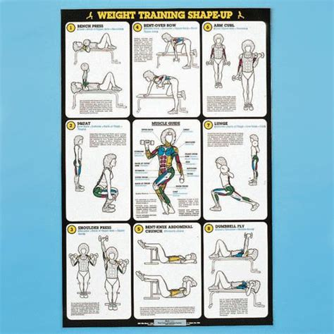 printable exercise instructions self instruction weight training poster free weight