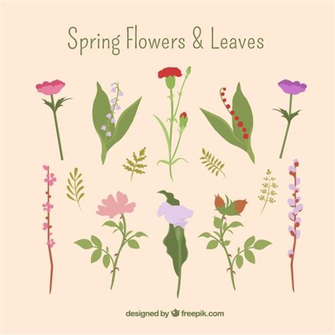 fiori gratis da scaricare fiori di primavera e foglie scaricare vettori gratis