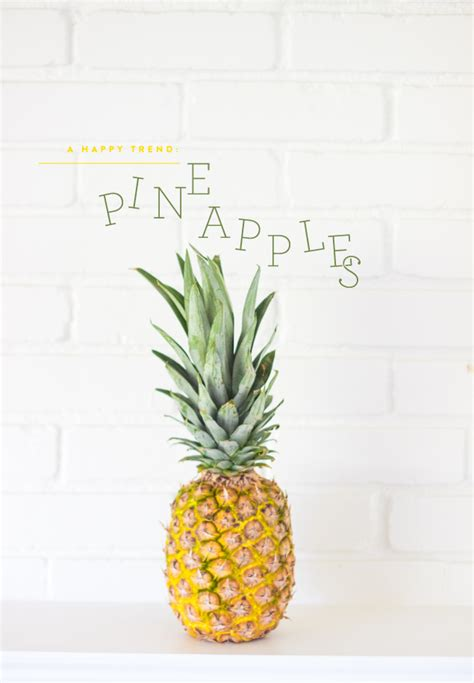 pineapple trend trend to pineapple everything pencil shavings