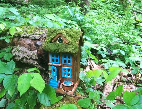 fairy homes new jersey hiking trail lined with mysterious itsy bitsy