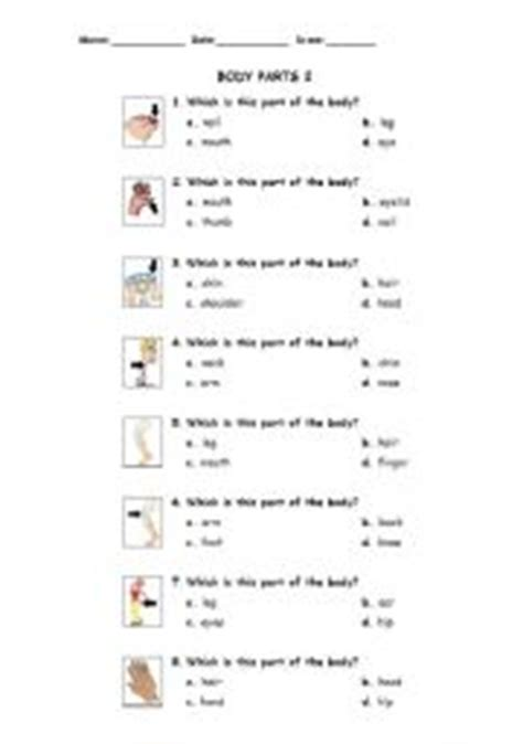 multiple choice worksheets on theme body parts parts of the body answer the questions