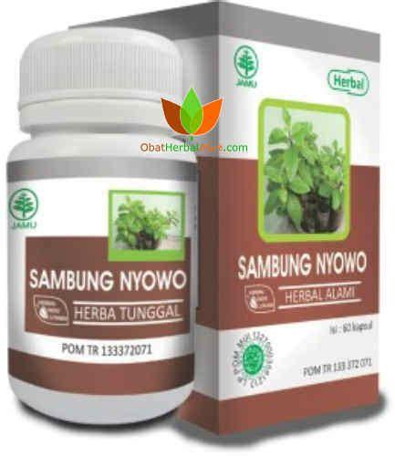 Obat Herbal Indo Utama sambung nyawa herbal indo utama sambung nyowo toko obat