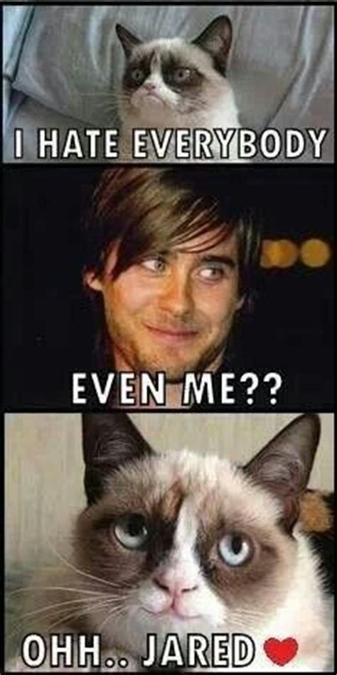 Jared Leto Meme - jared leto vs grumpy cat jared leto 30 seconds to mars