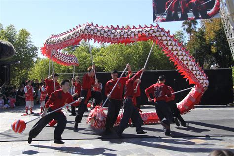 dragon boat festival 2017 sydney bendigo easter festival 2017 chinese youth league lion