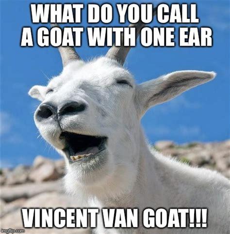 Goat Memes - goat meme 28 images 27 best images about glesga goats