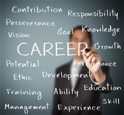 career definition  career development iresearchnet