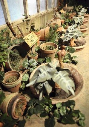 herbology table hp shindig harry potter pinterest harry potter tables and medicine