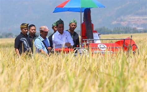 Benih Cabai Pm 999 subsidi benih bagi petani dicabut mentan ganti dengan ini